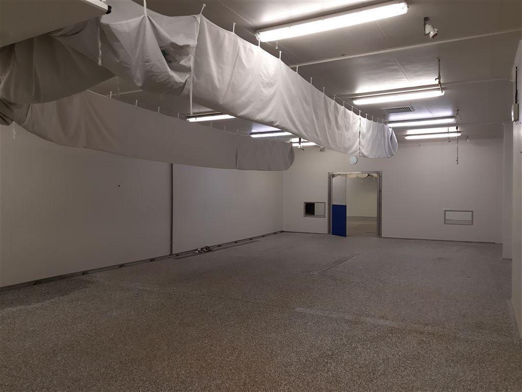 Foto 7 : Bedrijfsgebouwen te 9160 LOKEREN (België) - Prijs € 3.140.000