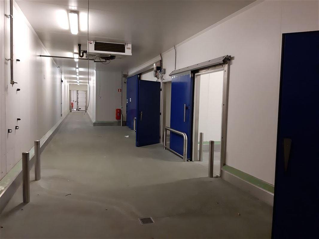 Foto 3 : Bedrijfsgebouwen te 9160 LOKEREN (België) - Prijs € 2.500.000