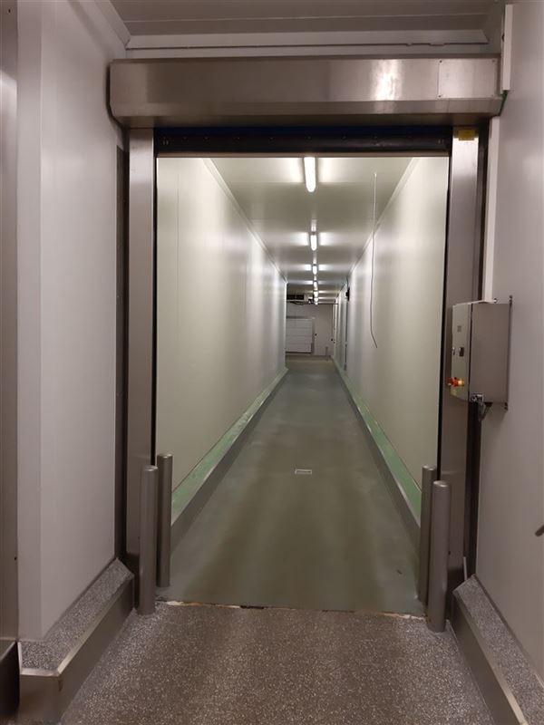 Foto 9 : Bedrijfsgebouwen te 9160 LOKEREN (België) - Prijs € 2.500.000