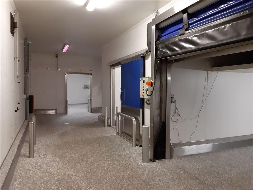 Foto 5 : Bedrijfsgebouwen te 9160 LOKEREN (België) - Prijs € 2.500.000